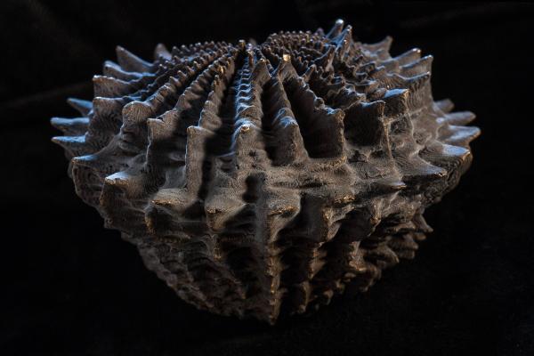 Casa Magica, Tübingen, Förster + Weißinger, 3D-Druck direkt ausgeschmolzen